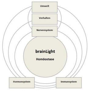 brainLight Homöostase