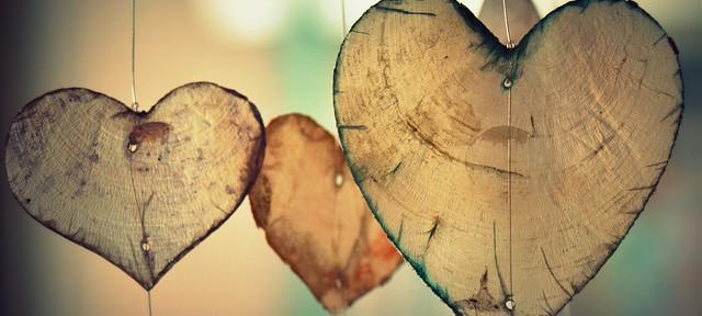 Das flexible Herz – Wie das Herz uns hilft, unsere Träume zu verwirklichen